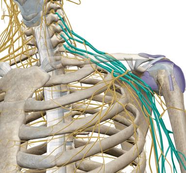 Shoulder pain treatments